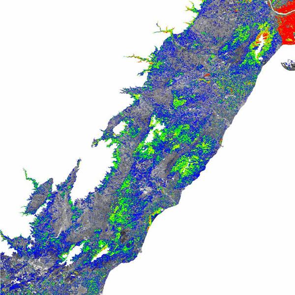 Mapa de vegetación con diferentes niveles de NDVI